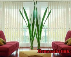 Rèm lá màu trắng hiện đại ở Hà Tĩnh mã RLD122